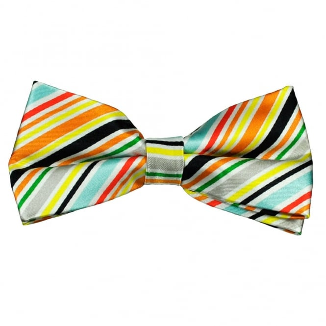 Multi Coloured Striped Men's Silk Bow Tie