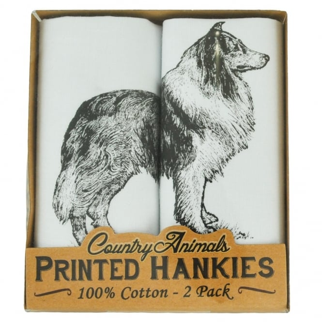 Rough Collie 2 Pack Handkerchief Set